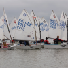 Optimist Open 18 Jan 2015